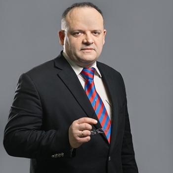 Владимир Рожанковский