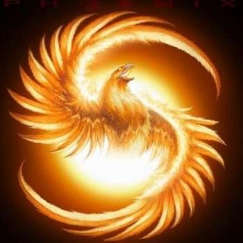 Rayzer Phoenix