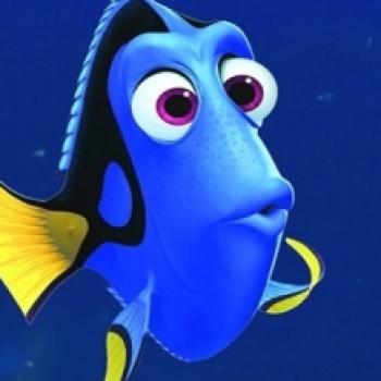 рыбка Дори